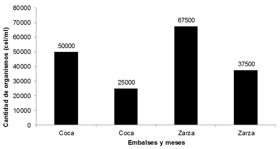 Cantidad de organismos del fitoplancton (cel/ml) y porcentaje que representan en cada embalse por mes de colecta.